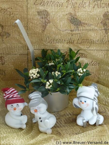 Milchschöpfer weihnachtlich dekoriert. Dekoration nicht im Preis enthalten!