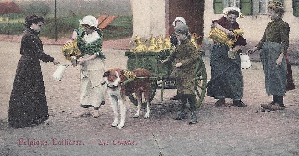 Alte-Milchkannen-Belgien-1907
